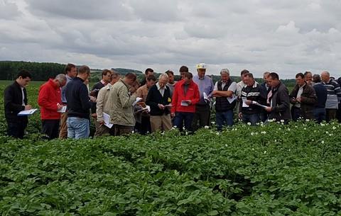 VISITE ESSAIS 22 06 2021   AUTHIE (80560) - coopérative agricole Vecquemont